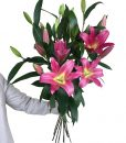 Oriental Lillies – 2 Bunches